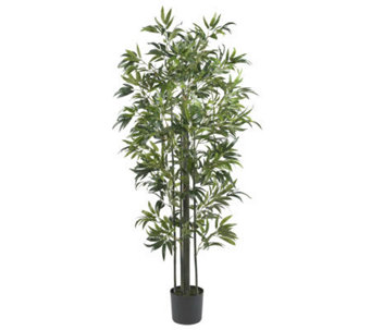6' Bamboo Tree by Nearly Natural - H357360