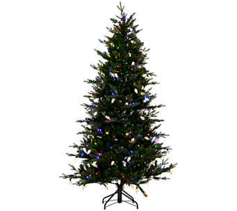 ED On Air 7.5' Denmark Tree with Retro C9 Bulbs by Ellen DeGeneres - H205961