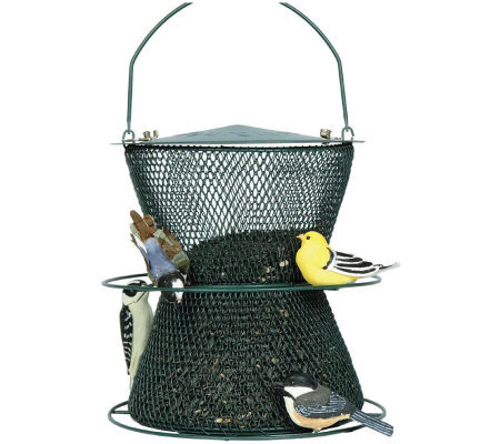 No/No Hourglass 2.5 lb Bird Feeder in Forest Green