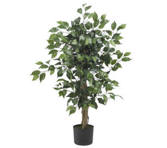 3' Ficus Tree by Nearly Natural - H179262