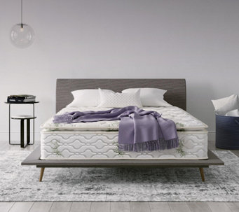 "Signature Sleep Signature 13"" Queen Mattress - H289562"