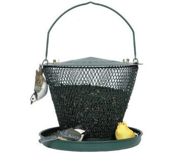No/No Tray 2.5 lb Bird Feeder in Forest  Green - H349763