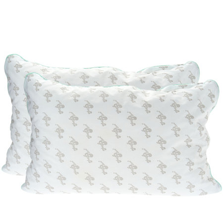 MyPillow Classic Set of 2 Std/Q Pillows w Color Cording