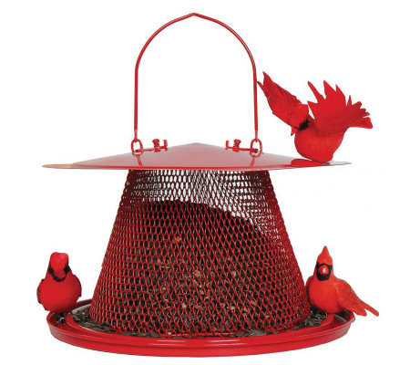 No/No Cardinal 2.5 lb Bird Feeder in Red