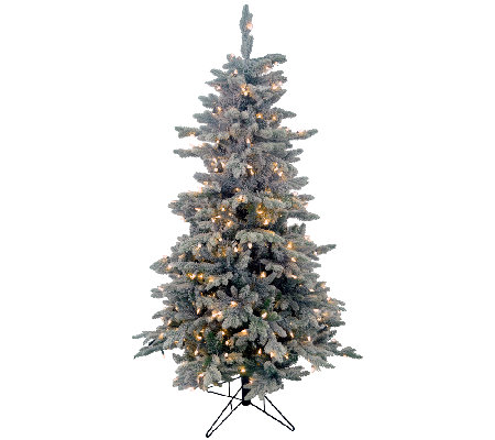 5.5' Frosted Balsam Tree by Valerie