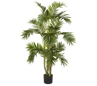 4' Areca Palm Tree by Nearly Natural - H357366