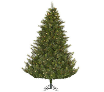 7.5' Prelit Modesto Mixed Pine Tree by Vickerman - H287667