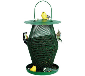No/No Lantern 6 lb Bird Feeder in Forest Green - H349767