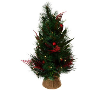 "ED On Air 24"" Mixed Pine Tabletop Tree w/ Ornaments by Ellen DeGeneres - H209568"