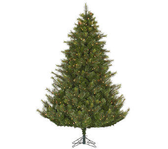 7.5' Prelit Modesto Pine Tree w/ LED Lights byVickerman - H287669