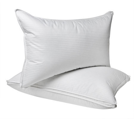 Northern Nights Set of 2 Standard Gusset Uncrushable Pillows