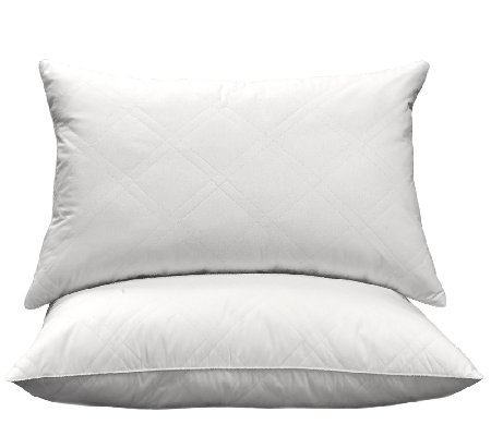 Blue Ridge 95/5 White Goose Feather & Down Quilted Pillow S/2
