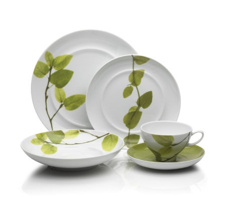 Mikasa Daylight 5-Piece Place Setting