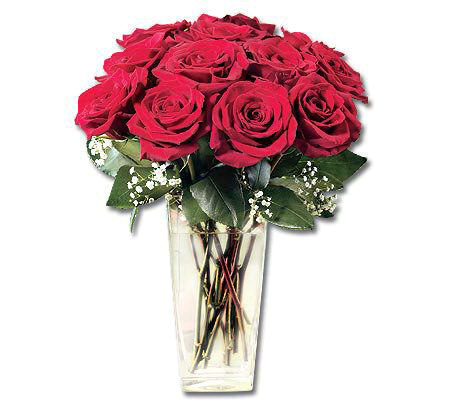 One Dozen Red Roses with Vase by ProFlowers