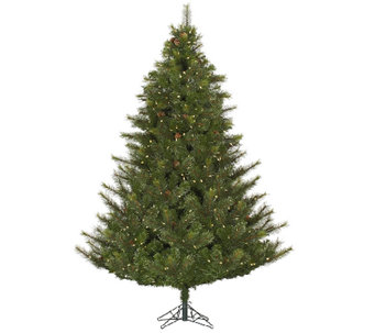 10'  Prelit Modesto Mixed Pine Tree w/ LED Lights by Vickerman - H287673