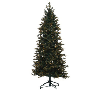 Bethlehem Lights 5' Hartford Spruce Christmas Tree w/Instant Power - H205674