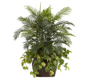3-1/2' Double Areca with Vase & Pothos Plant byNearly Natural - H357374