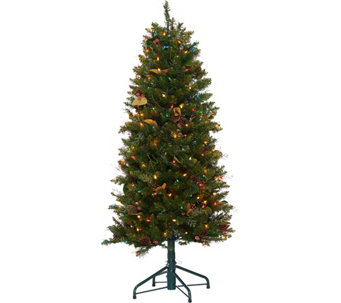 Bethlehem Lights 5' Canterbury Slim Christmas Tree - H208575