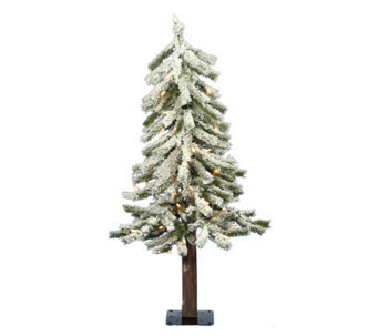 2' Prelit Flocked Alpine Tree with Clear Lightsby Vickerman - H183976