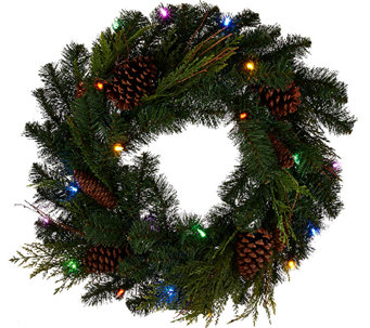 "ED On Air 24"" Lit Pinecone Wreath by Ellen DeGeneres - H206276"