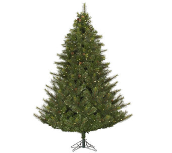 12' Prelit Modesto Mixed Pine Tree w/ LED Lights by Vickerman - H287677