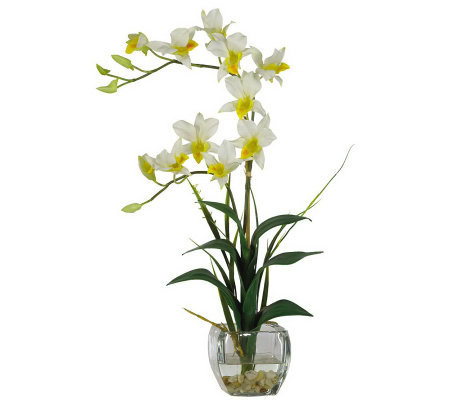 Dendrobium Flower Arrangement by Nearly Natural