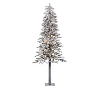 7' Prelit Flocked Alpine Tree with Clear Lightsby Vickerman - H183978
