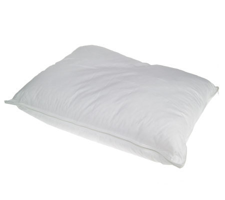 Bodipedic Visco Elastic Memory Foam and Poly Cluster Pillow