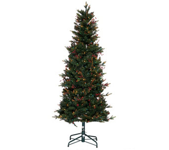 Bethlehem Lights 5' Lakewood Fir Christmas Tree w/Instant Power - H205679