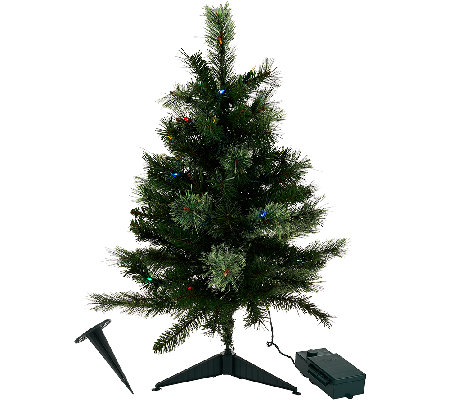 "Bethlehem Lights 30"" Cashmere Stake Tree"