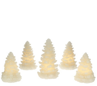 Set of 5 Illuminated Glitter Wax Trees by Valerie - H205280