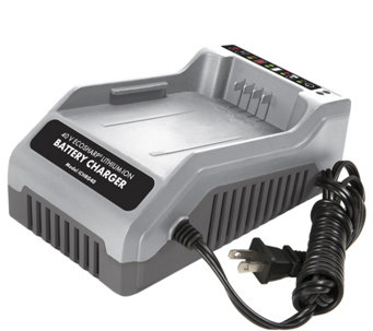 Sun Joe iON 40V EcoSharp Battery Charger - H288780