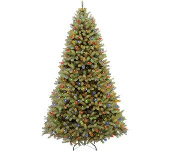 national tree company 10 lit downswept douglasfir tree h294380 - 10 Christmas Tree