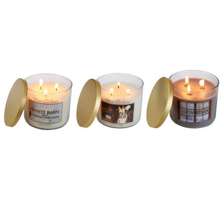 Bath & Body Works Set of 3 14.5 oz Triple Wick Candles