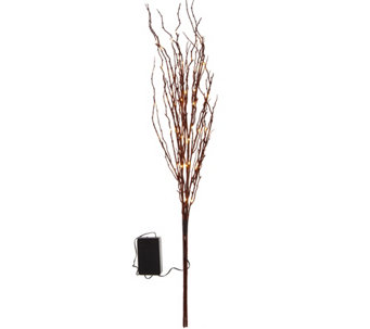 "Bethlehem Lights Battery Operated 36"" Glitter Sprigs with 60 LEDs - H209384"
