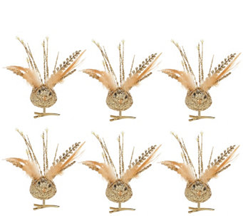 Set of 6 Clip On Glitzy Embellished Bird Picks - H209186