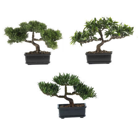 12&quot Bonsai Plant Collection (Set of 3) by Nearly Natural