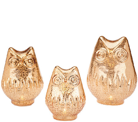 Set of 3 Mercury Glass Owls with Timer