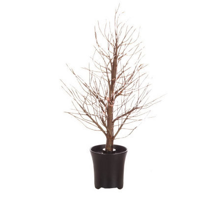 "BethlehemLights Color Changing 24"" Fiber Optic Tree in Decorative Pot"