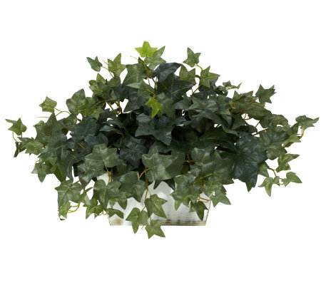 Ivy Plant with Whitewashed Planter by Nearly Natural