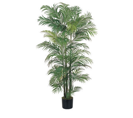 6' Areca Palm Tree by Nearly Natural