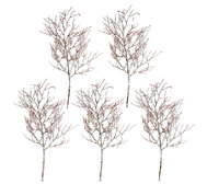 "Set of 5 24"" Frosted Twig Branch Sprays by Valerie"