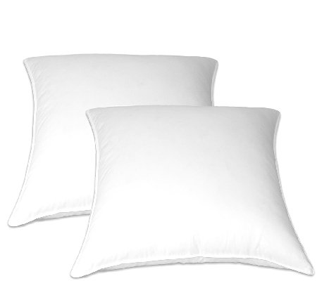 Blue Ridge 2-Pack of Feather European Square Pillows