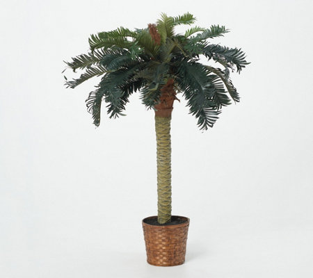 4' Sago Palm Tree by Nearly Natural