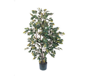 4' Ficus Tree by Nearly Natural - H162298