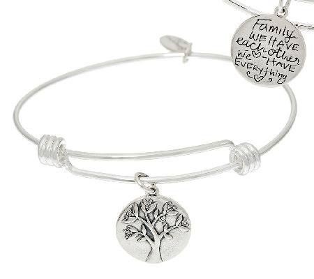 Extraordinary Life Sterling Silver Crystal Charm Bangles