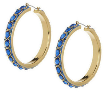 Wendy Williams Intricate Enamel & Facet Hoop Earrings - J270024