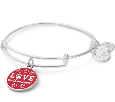 Alex and Ani Love Is All You Need Charm Bangle