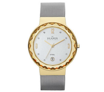 Skagen Women's Two-Tone Stainless Steel Mesh Bracelet Watch - J313658