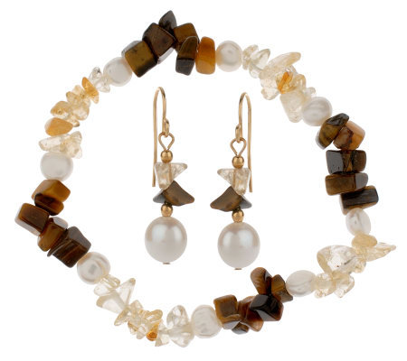 Lee Sands Tiger's Eye & Citrine Earring & Bracelet Set